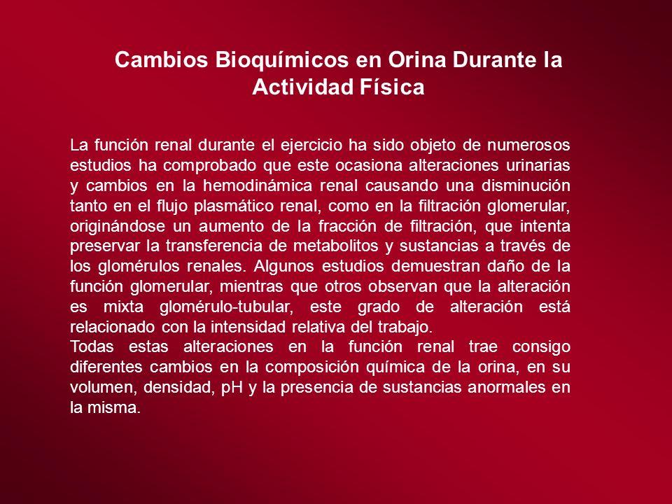 Cambios Bioquímicos en Orina Durante la Actividad Física