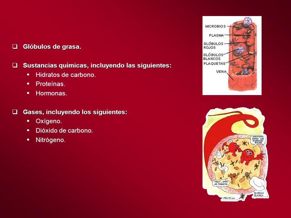 Glóbulos de grasa. Sustancias químicas, incluyendo las siguientes: Hidratos de carbono. Proteínas.