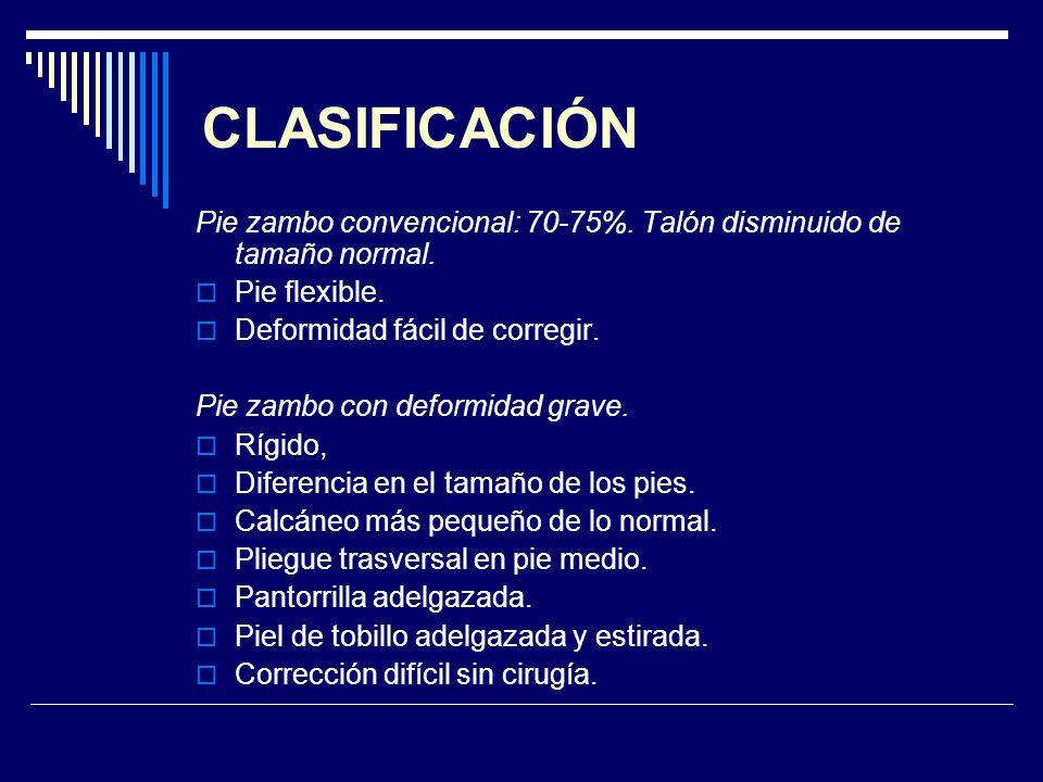 CLASIFICACIÓN Pie zambo convencional: 70-75%. Talón disminuido de tamaño normal. Pie flexible. Deformidad fácil de corregir.