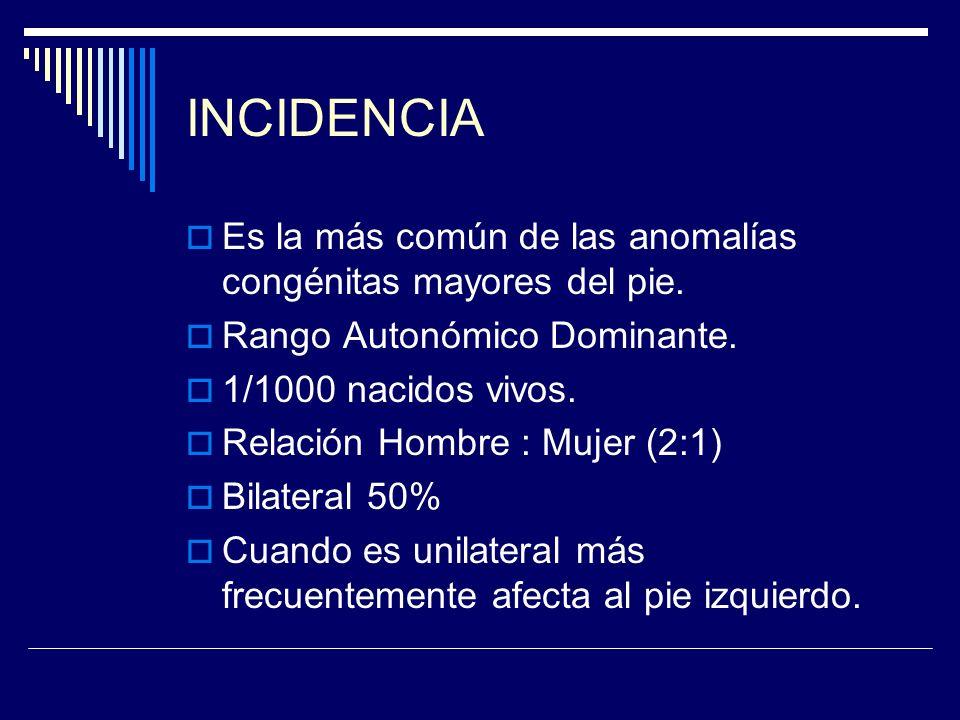 INCIDENCIA Es la más común de las anomalías congénitas mayores del pie. Rango Autonómico Dominante.
