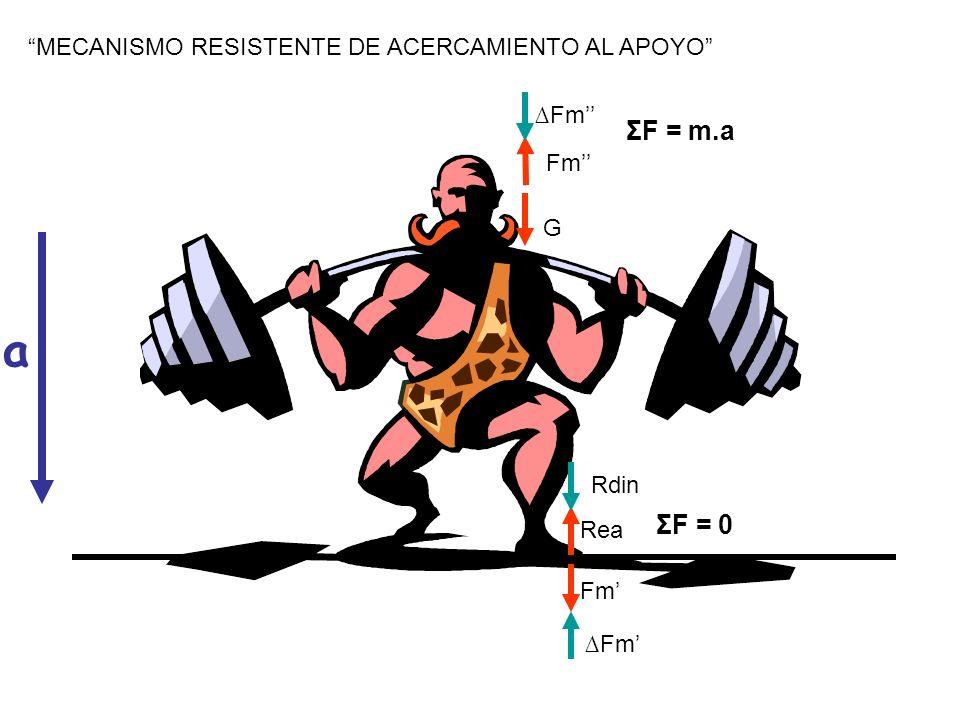 a ΣF = m.a ΣF = 0 MECANISMO RESISTENTE DE ACERCAMIENTO AL APOYO