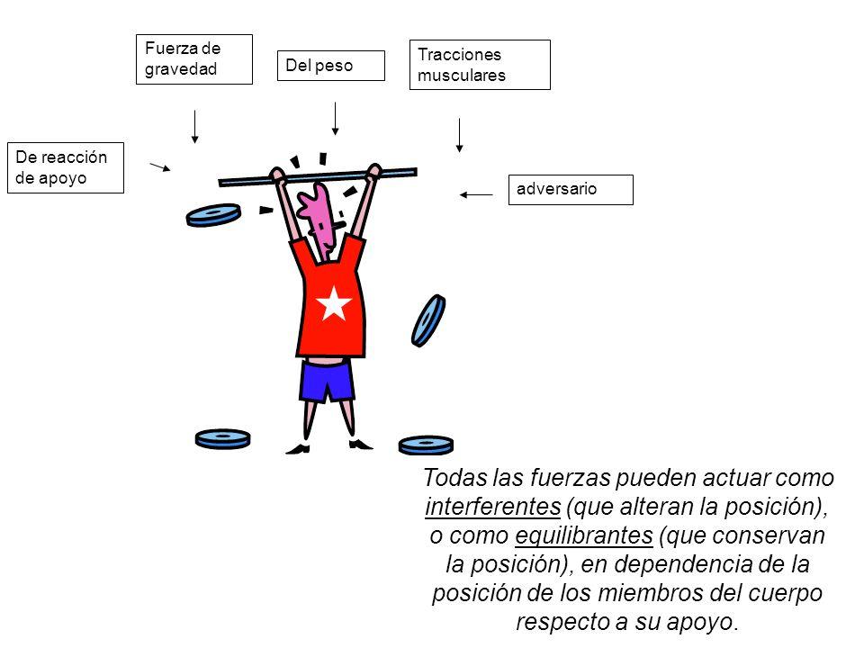 Fuerza de gravedad Tracciones musculares. Del peso. De reacción de apoyo. adversario.