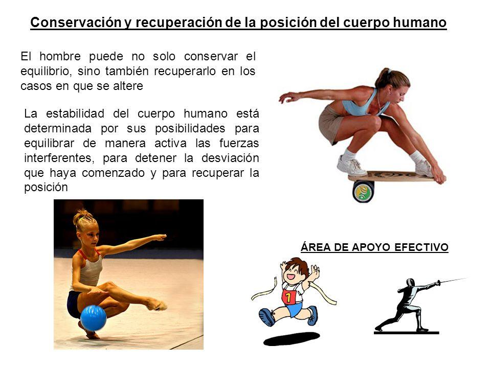 Conservación y recuperación de la posición del cuerpo humano