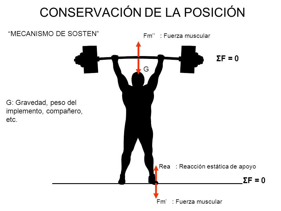 CONSERVACIÓN DE LA POSICIÓN