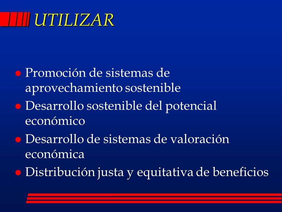 UTILIZAR Promoción de sistemas de aprovechamiento sostenible