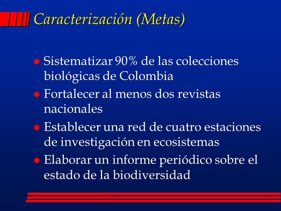 Caracterización (Metas)