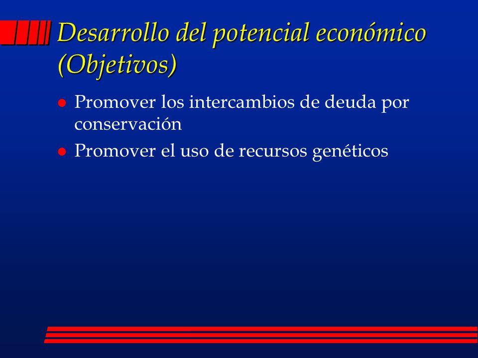 Desarrollo del potencial económico (Objetivos)