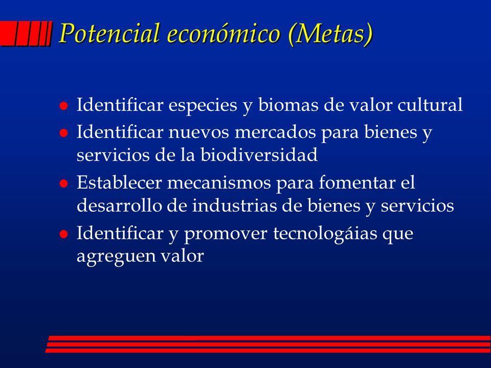 Potencial económico (Metas)
