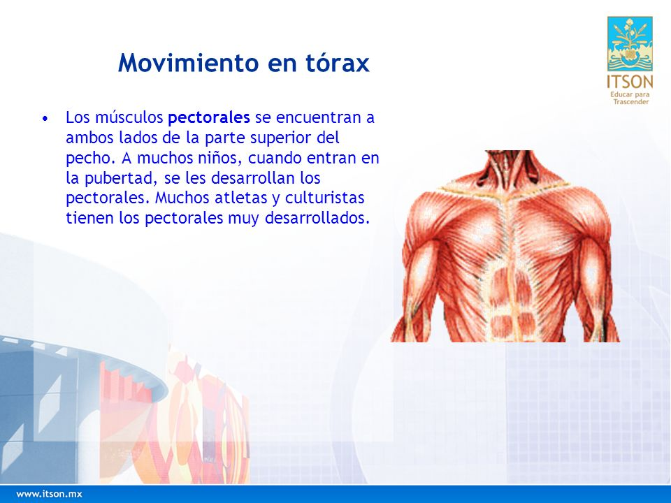 Movimiento en tórax