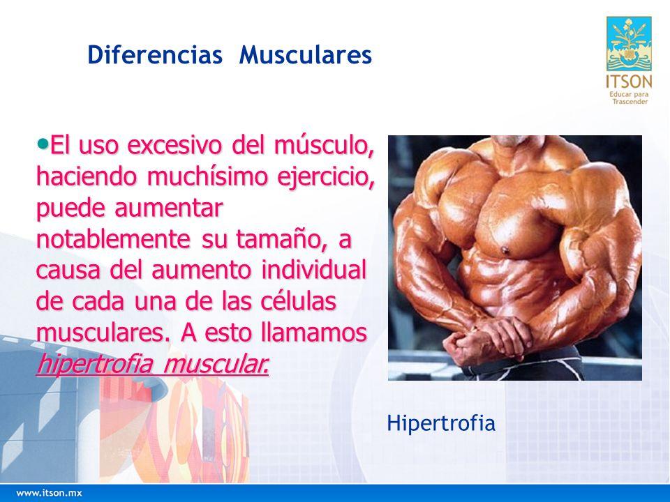 Diferencias Musculares
