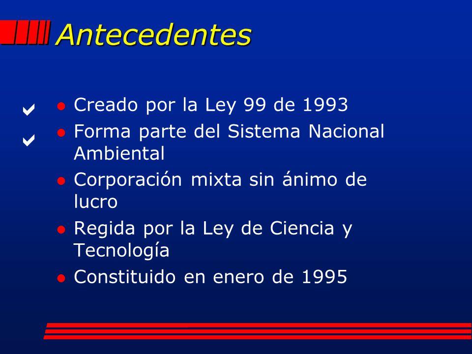 Antecedentes   Creado por la Ley 99 de 1993