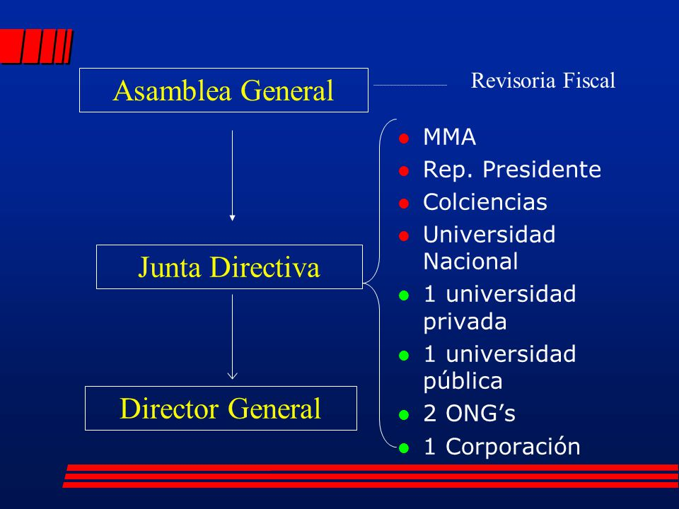 Asamblea General Junta Directiva Director General Revisoria Fiscal MMA
