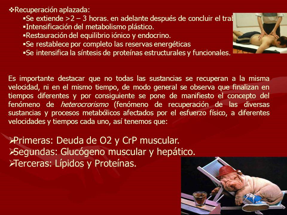 Primeras: Deuda de O2 y CrP muscular.