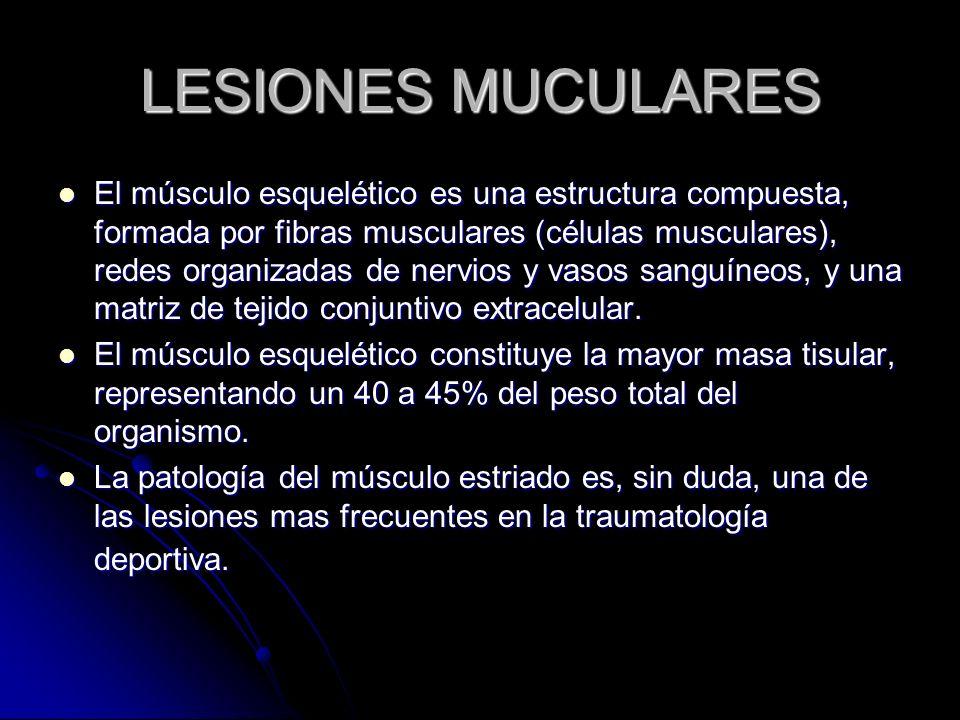 LESIONES MUCULARES