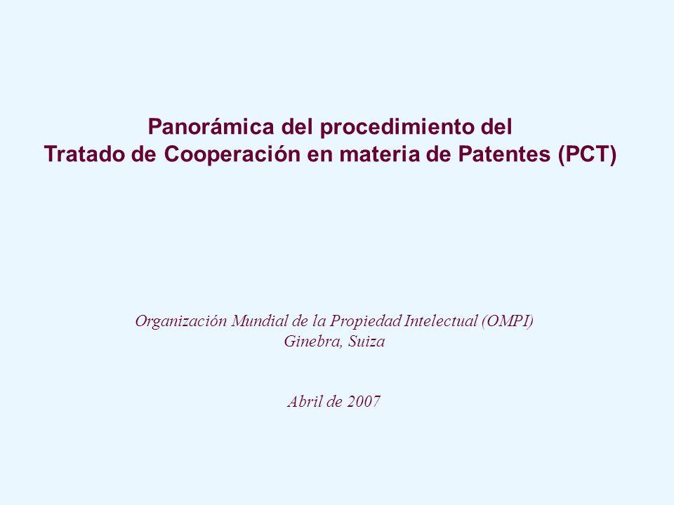 Panorámica del procedimiento del