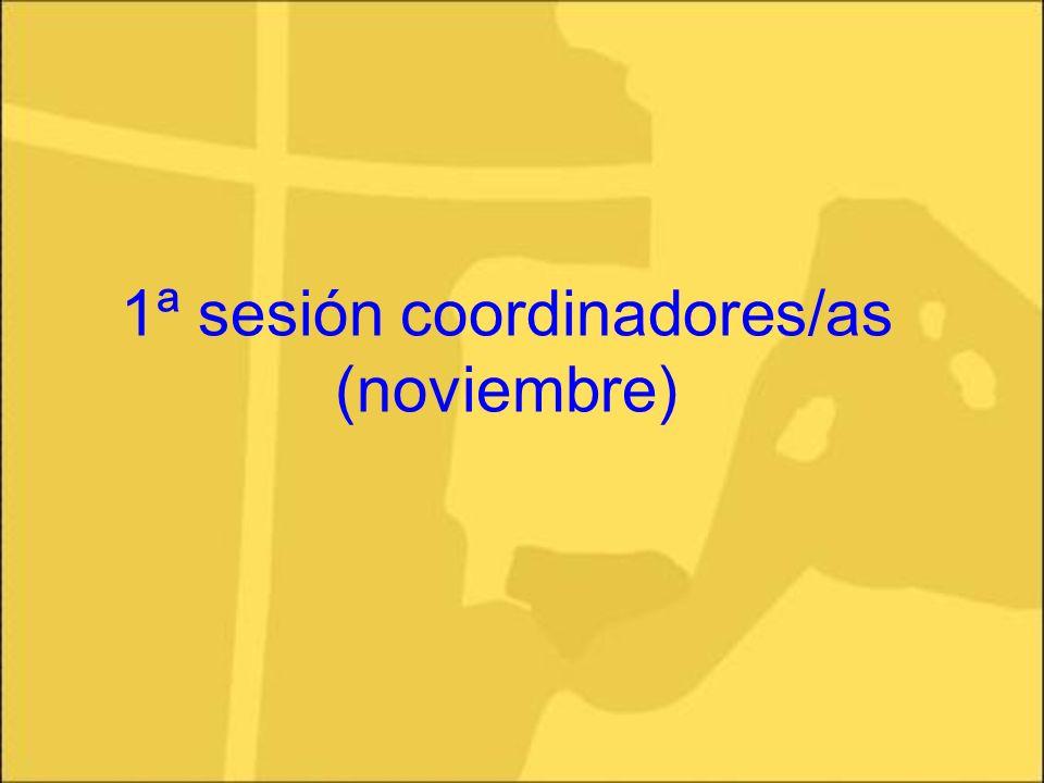 1ª sesión coordinadores/as (noviembre)