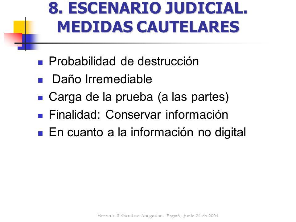 8. ESCENARIO JUDICIAL. MEDIDAS CAUTELARES
