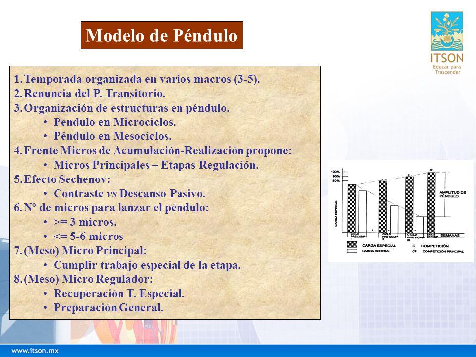 Modelo de Péndulo Temporada organizada en varios macros (3-5).