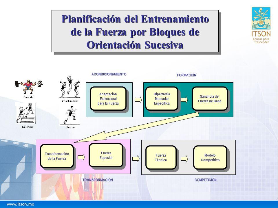 Planificación del Entrenamiento
