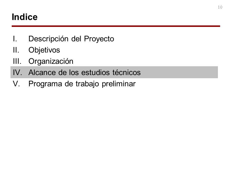 Indice Descripción del Proyecto Objetivos Organización