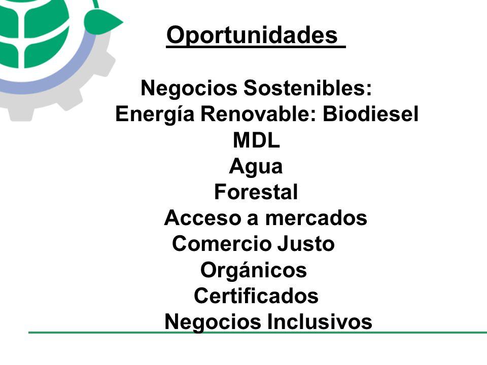 Negocios Sostenibles: Energía Renovable: Biodiesel