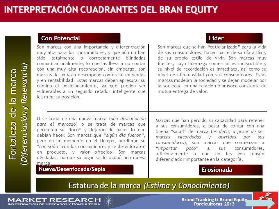 INTERPRETACIÓN CUADRANTES DEL BRAN EQUITY