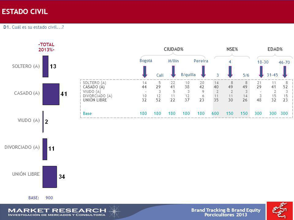 ESTADO CIVIL -TOTAL 2013%- CIUDAD% NSE% EDAD% SOLTERO (A) CASADO (A)