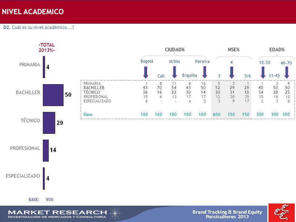 NIVEL ACADEMICO -TOTAL 2013%- CIUDAD% NSE% EDAD% PRIMARIA BACHILLER
