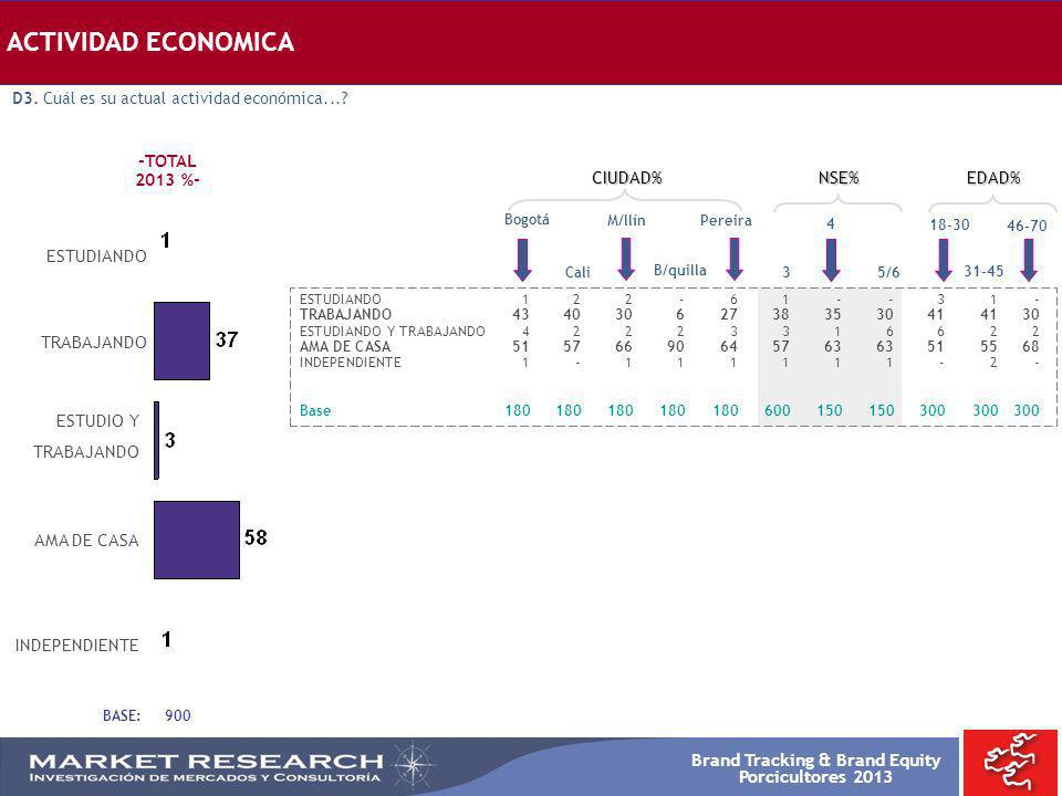 ACTIVIDAD ECONOMICA -TOTAL 2013 %- CIUDAD% NSE% EDAD% ESTUDIANDO