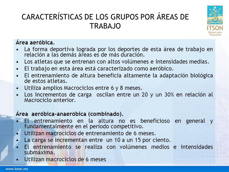 CARACTERÍSTICAS DE LOS GRUPOS POR ÁREAS DE TRABAJO