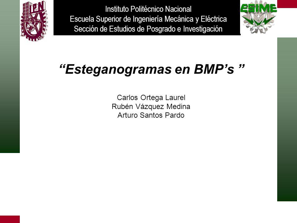 Esteganogramas en BMP's