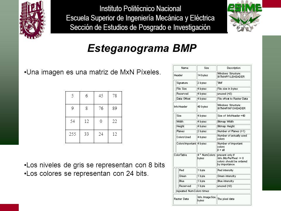 Esteganograma BMP Instituto Politécnico Nacional