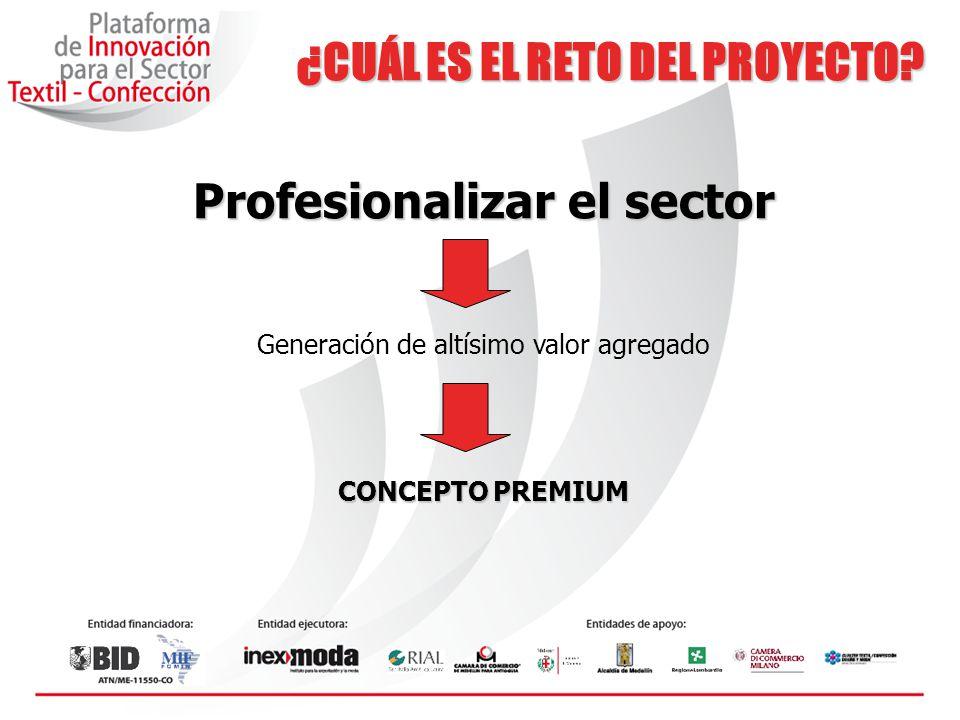 Profesionalizar el sector