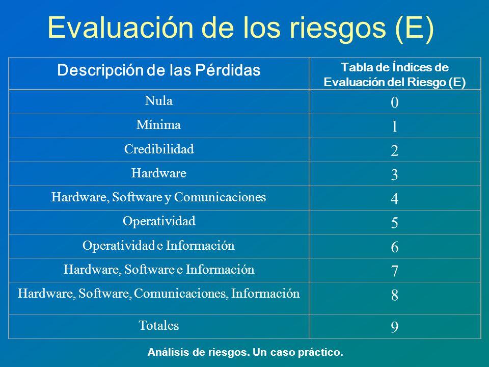 Evaluación de los riesgos (E)