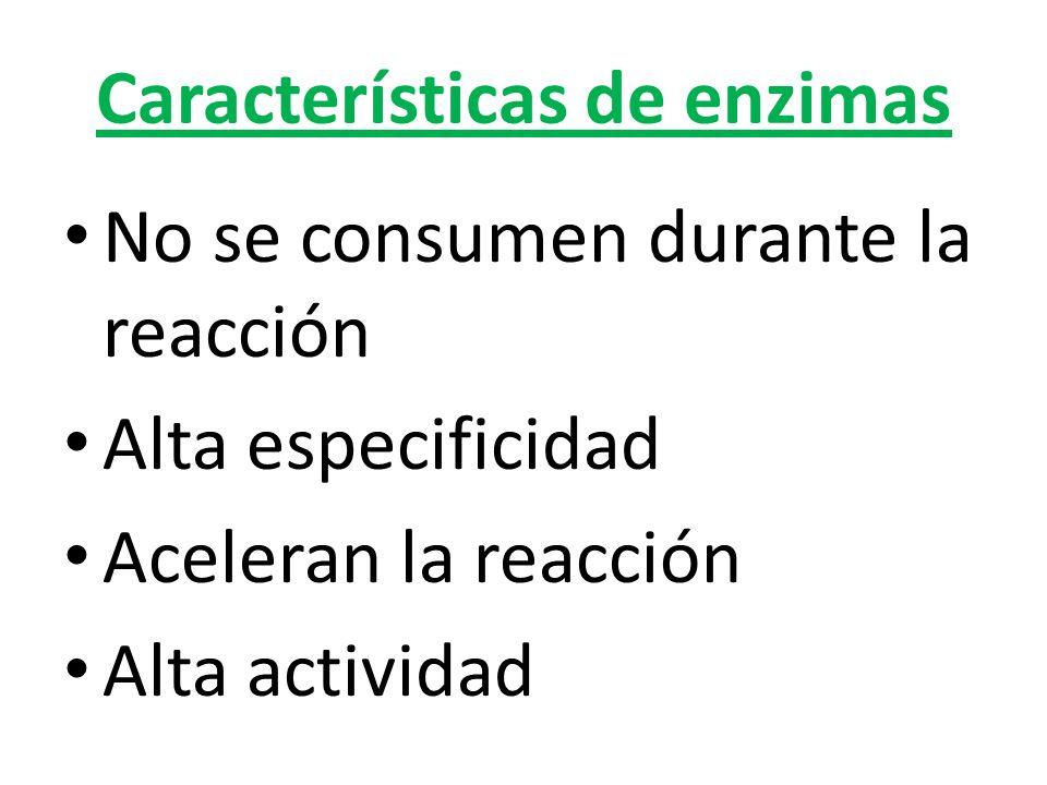 Características de enzimas