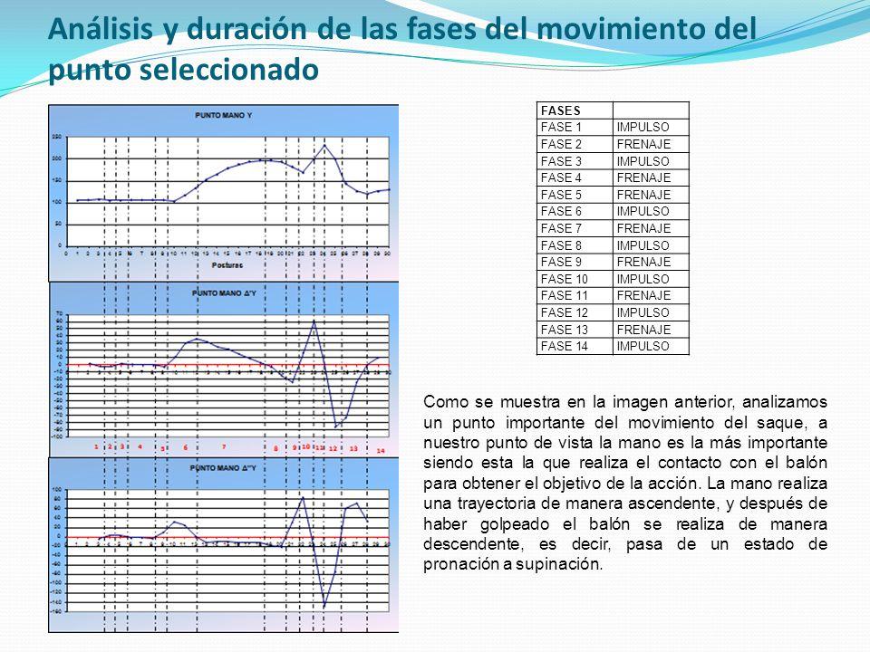 Análisis y duración de las fases del movimiento del punto seleccionado