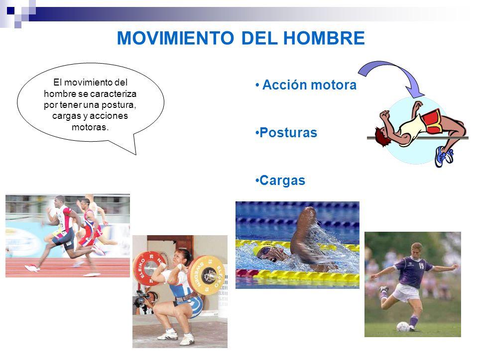 MOVIMIENTO DEL HOMBRE Acción motora Posturas Cargas