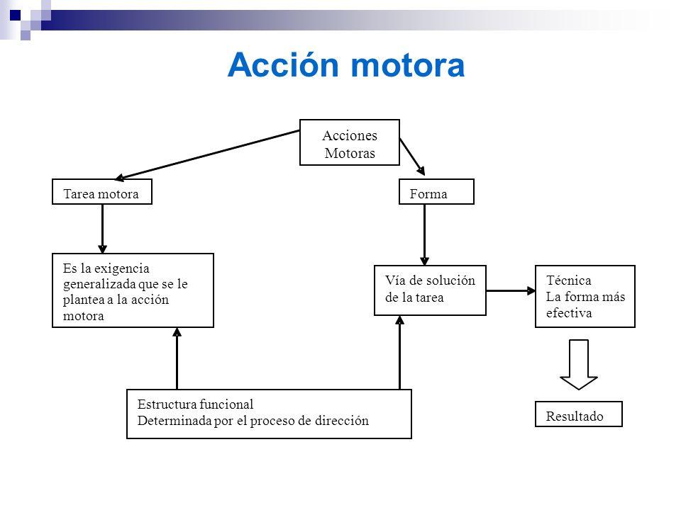 Acción motora Acciones Motoras Tarea motora Forma Es la exigencia