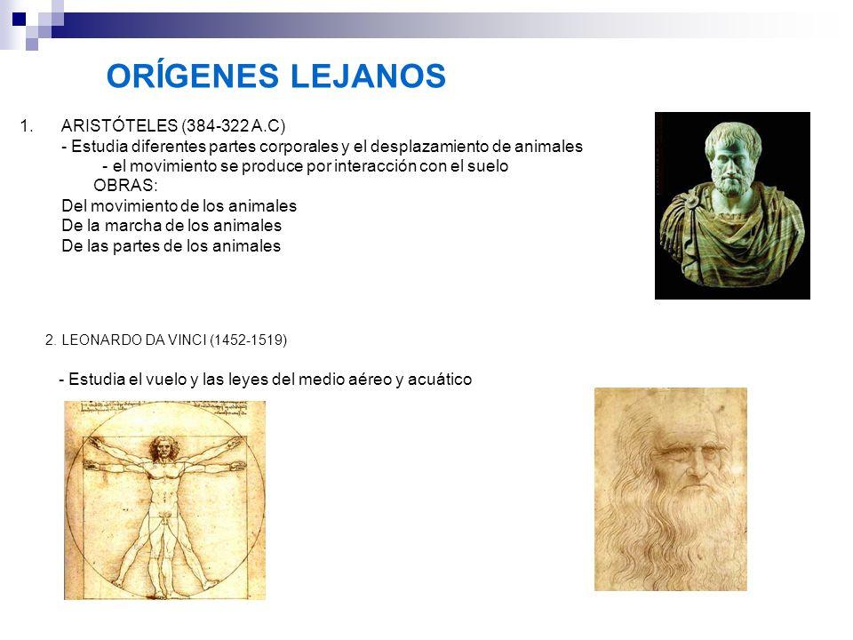 ORÍGENES LEJANOS ARISTÓTELES (384-322 A.C)