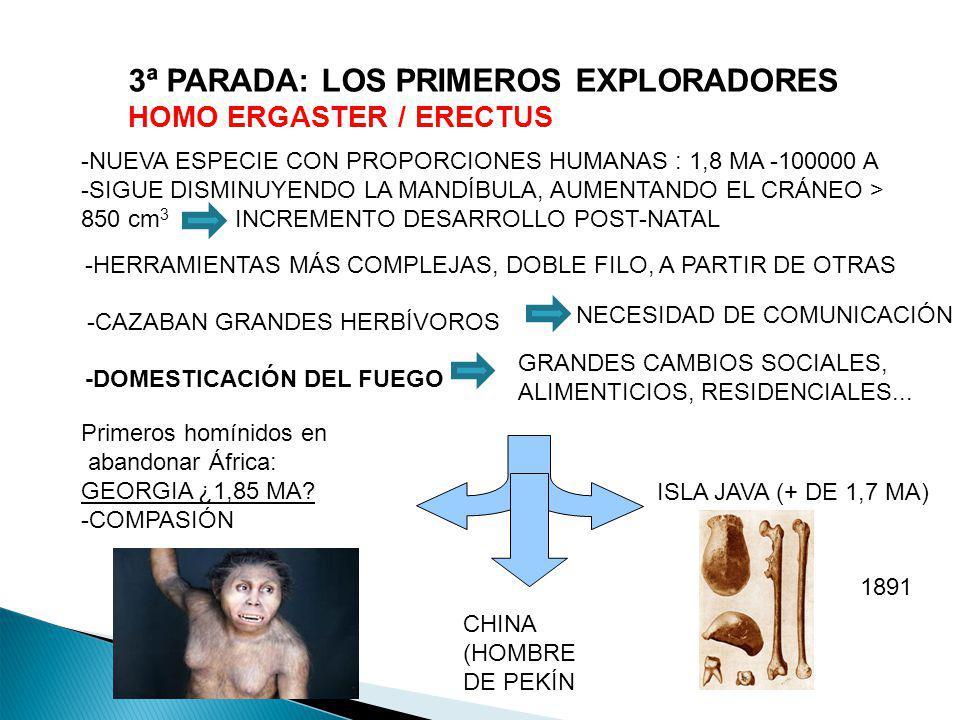 3ª PARADA: LOS PRIMEROS EXPLORADORES