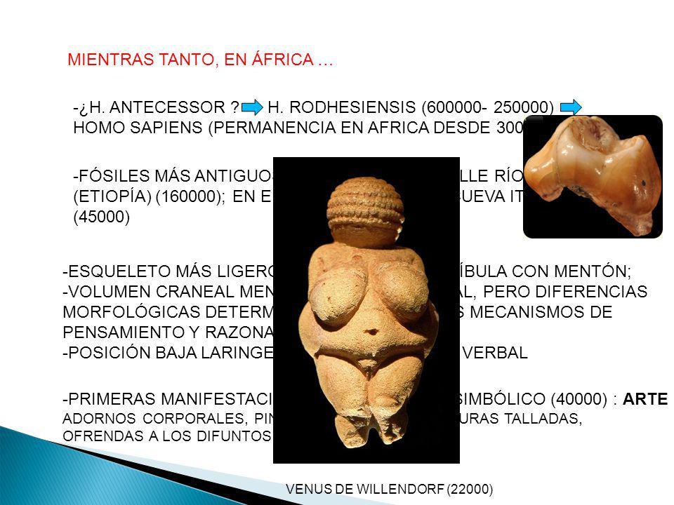 MIENTRAS TANTO, EN ÁFRICA …