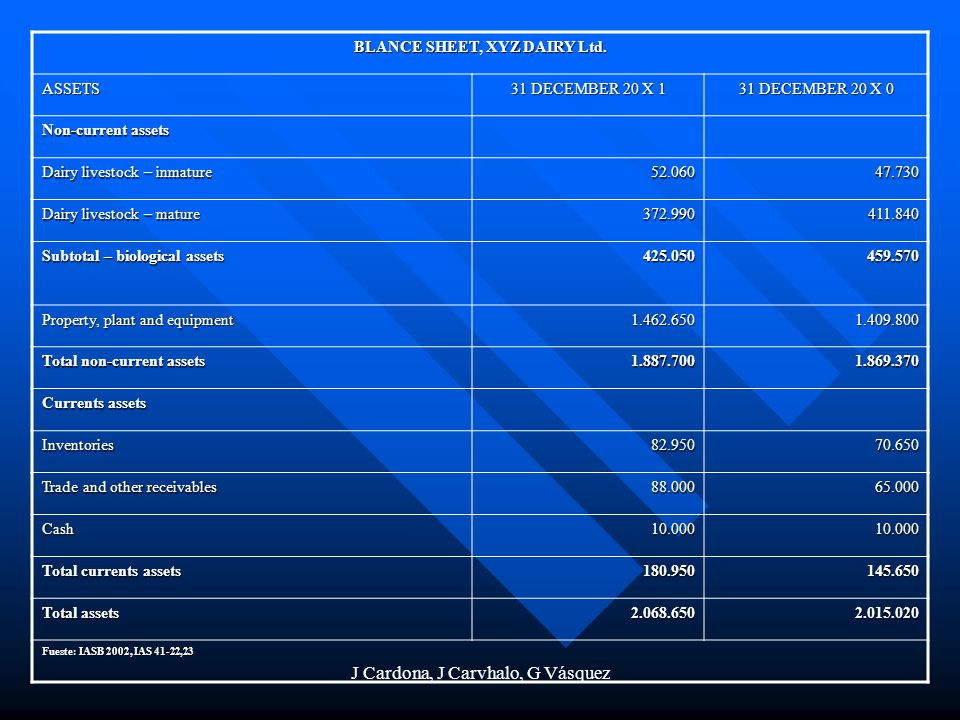 BLANCE SHEET, XYZ DAIRY Ltd.