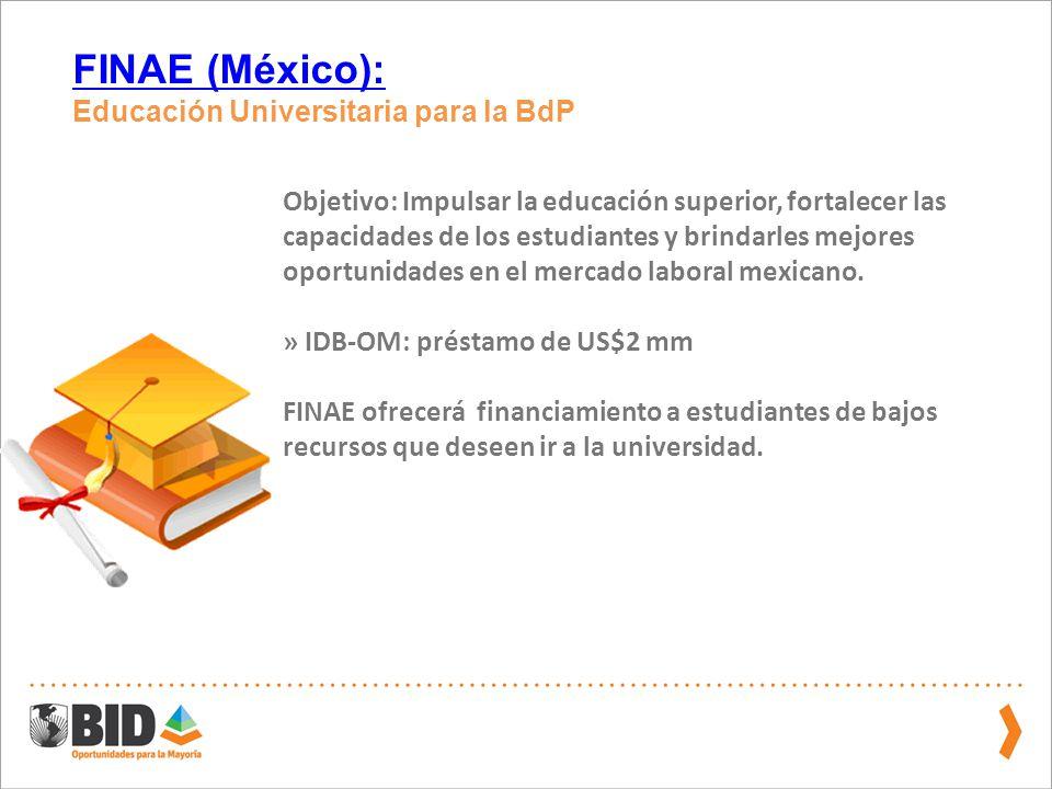 FINAE (México): Educación Universitaria para la BdP