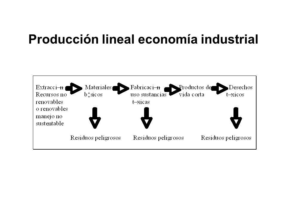 Producción lineal economía industrial