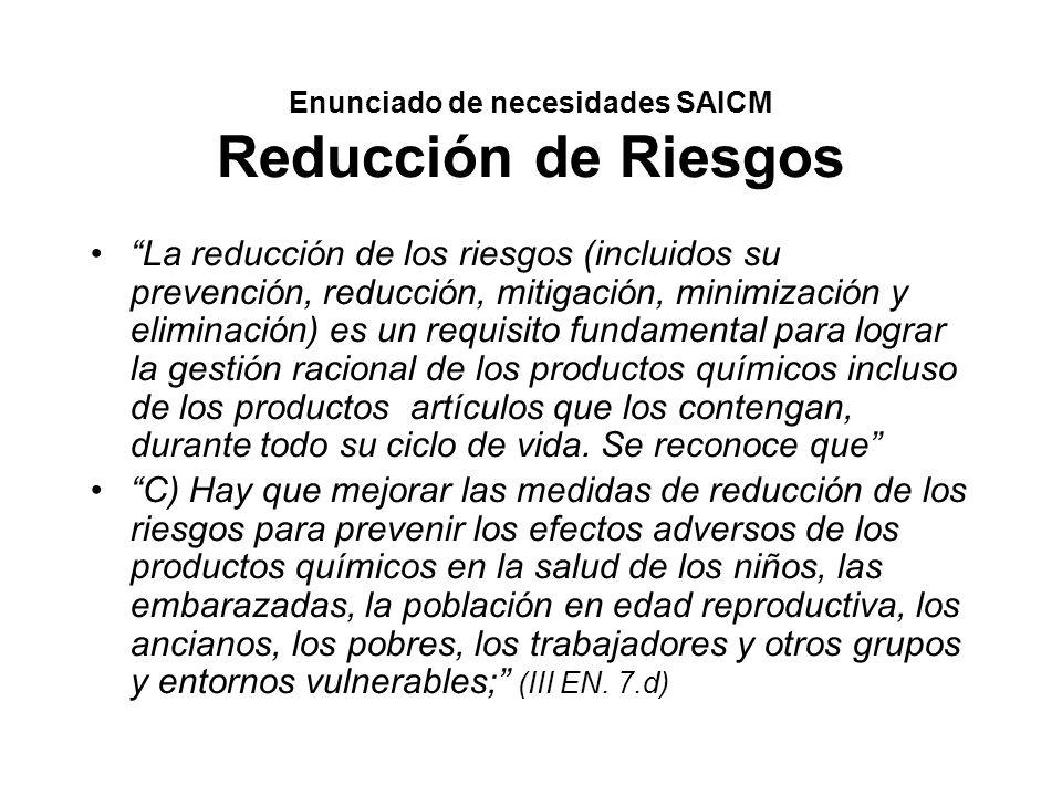 Enunciado de necesidades SAICM Reducción de Riesgos