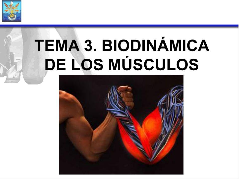 TEMA 3. BIODINÁMICA DE LOS MÚSCULOS