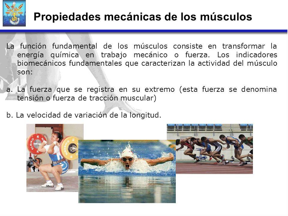 Propiedades mecánicas de los músculos