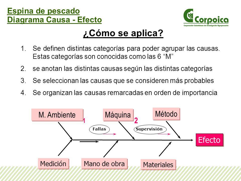 ¿Cómo se aplica Espina de pescado Diagrama Causa - Efecto M. Ambiente
