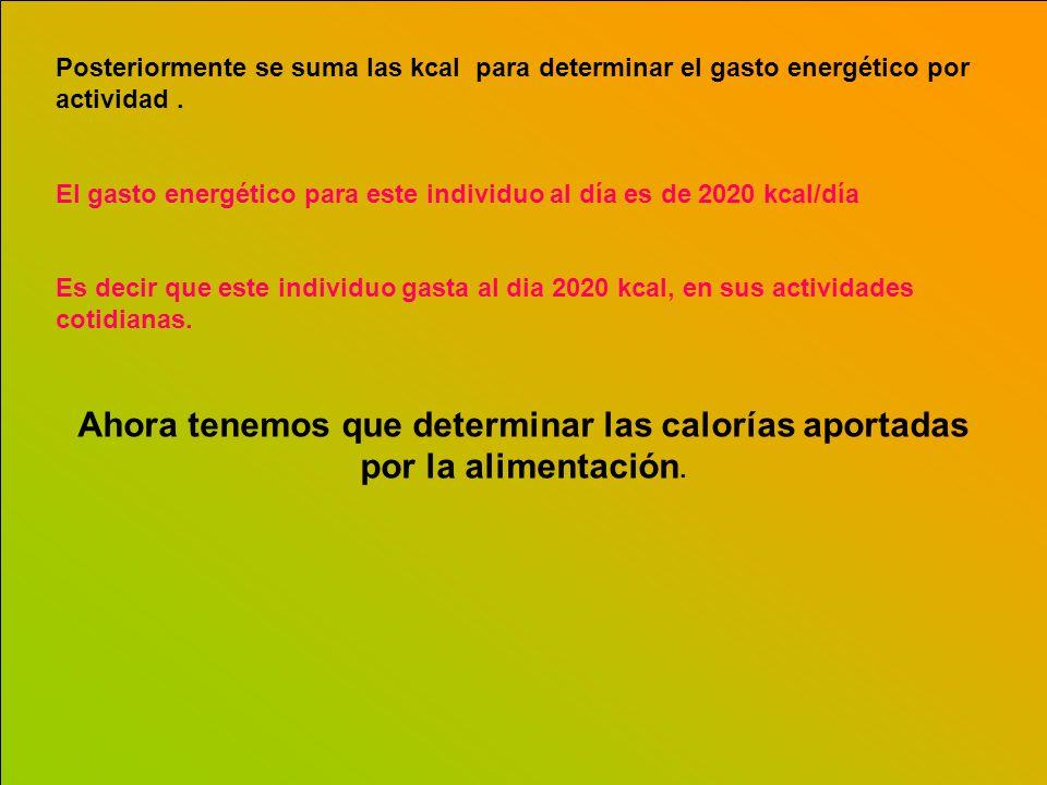 Posteriormente se suma las kcal para determinar el gasto energético por actividad .
