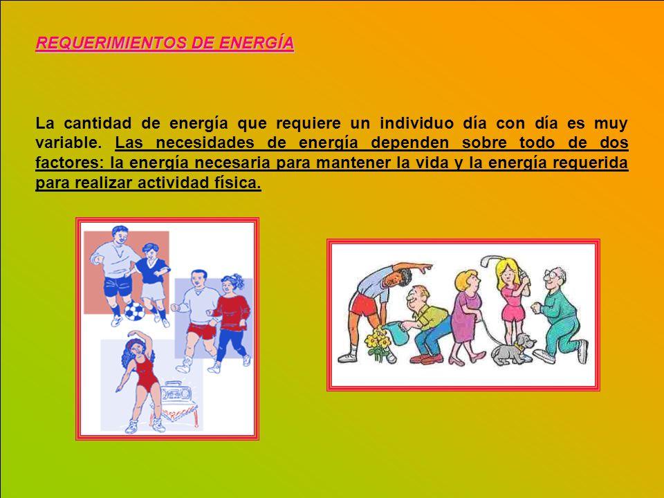 REQUERIMIENTOS DE ENERGÍA